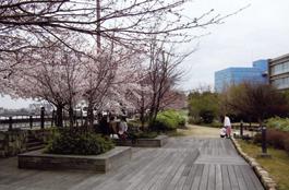 榎木橋橋詰広場