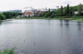 蓮間池から市民体育館をのぞむ
